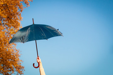 Umbrella in hand on blue background