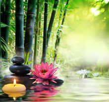 massage dans la nature - lis, pierres, bambou - notion zen