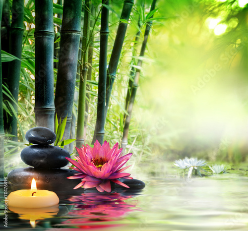 massage in nature - lily, stones, bamboo - zen concept - 70476496