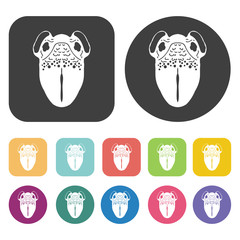 Vagina icon. Human organ icons set. Round and rectangle colourfu