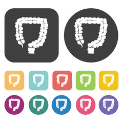 Intestines icon. Human organ icons set. Round and rectangle colo