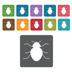 Beetle icon. Insect icon set. Rectangle colourful 12 buttons. Ve