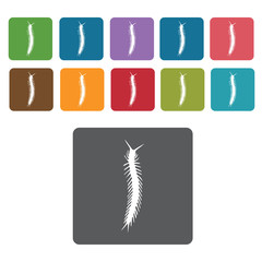 Centipede icon. Insect icon set. Rectangle colourful 12 buttons.