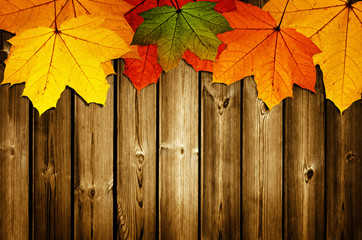 wooden background with autumn maple leaves