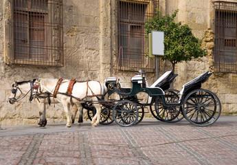 Pferdekutsche in Cordoba - Andalusien - Spanien