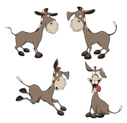 set of burros cartoon