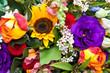 canvas print picture - Bunte Sommerblumen