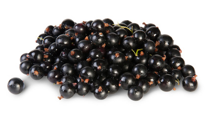 Fresh Black Currant Rotated