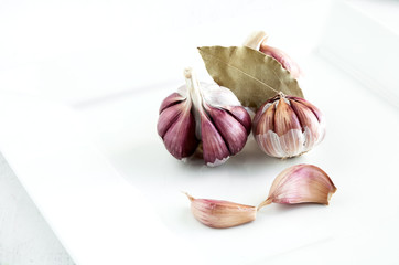 Purple garlic on white plate