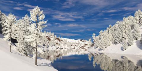 Деревья в инее на берегу реки.