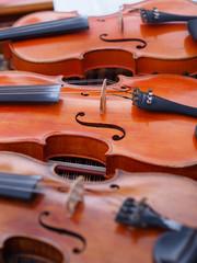 Group of violins