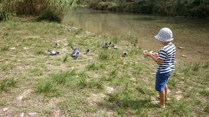 Niña dando de comer a las palomas