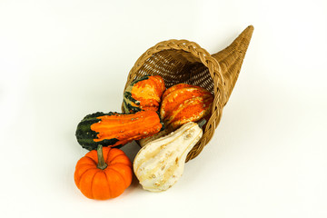 Cornucopia with Gourds and Pupkins