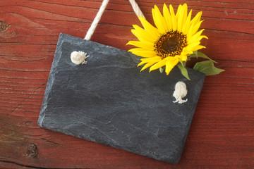 Blank Slate with Sun Flower