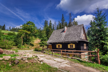 Small wooden house in the mountains in summer