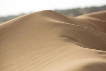 Closeup of a dune of sand in Sidi Kaouki
