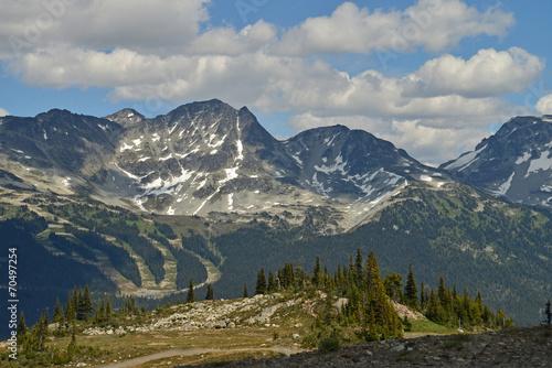 Fotobehang Natuur Park Ski slopes and snow-covered peaks around Whistler
