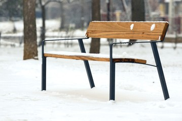 Stylish bench in winter park