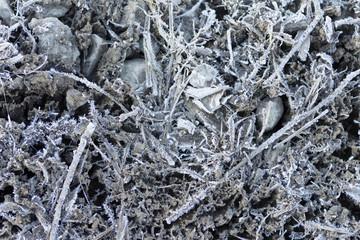 霜が降りた地面