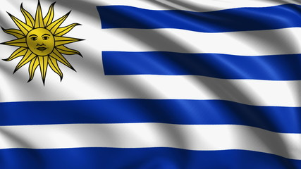 Uruguay flag with fabric structure; looping