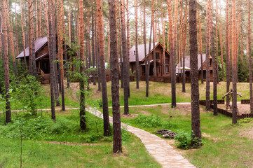 Village in the woods