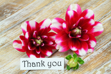 Thank you card with dahlia flowers on wooden surface