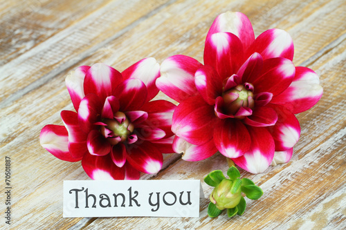 Fotobehang Dahlia Thank you card with dahlia flowers on wooden surface