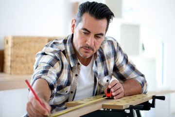 Portrait of man doing renovation work at home