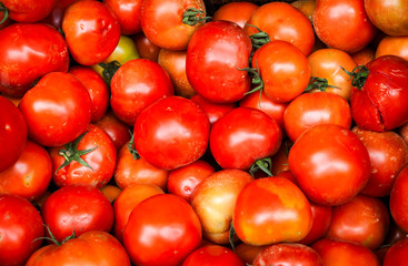 Dirty unwashed tomatoes