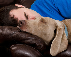 Dog and man sleeping