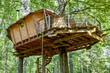 Leinwandbild Motiv Cabane dans les arbres_3