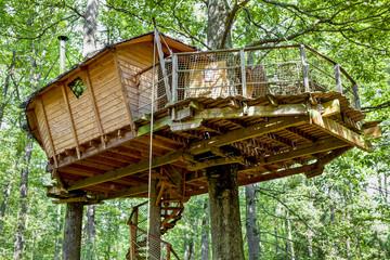 Cabane dans les arbres_3