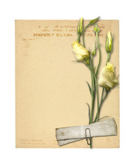 Set of old archival papers and vintage postcard with bouquet of