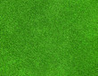 canvas print picture - green grass texture