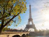 Fototapeta View of the Eiffel tower in Paris.