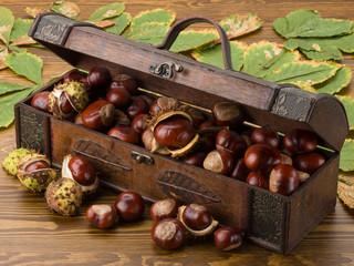 Schatzkiste mit Kastanien und Blättern