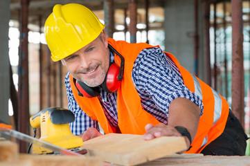 Carpenter Examining Plank