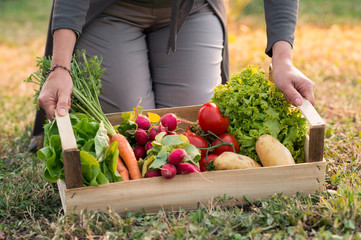 Woman With Vegetable Crate