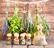 various fresh and dried herbs