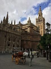Kutsche wartet vor Kathedrale Santa Maria in Sevilla