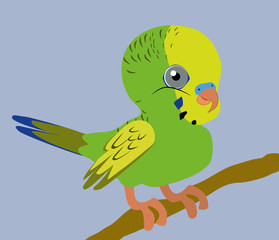 An Illustration of a green budgie