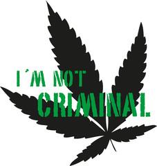 I´m Not Criminal
