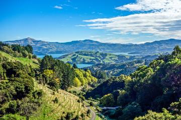 New Zealand 48