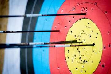 The archer has shot a lot of arrows in the target