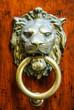 Maniglia di porta a forma testa di Leone, bussare - 70530214