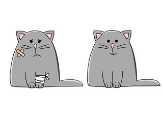 a set of two cartoon cats – sick and healthy