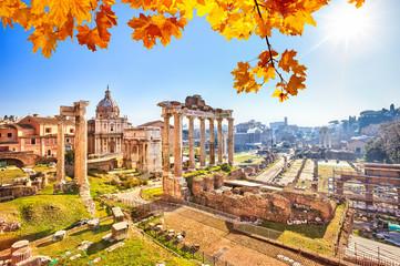 Roman ruins in Rome, Forum