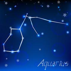 christmas zodiac sign
