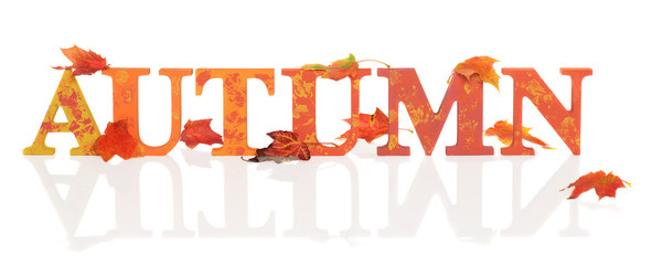 Autumn Letters With Leaves