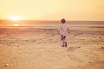 little boy walks in the evening on the nature at the sunset of t